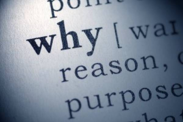 "What does ""why"" say?"